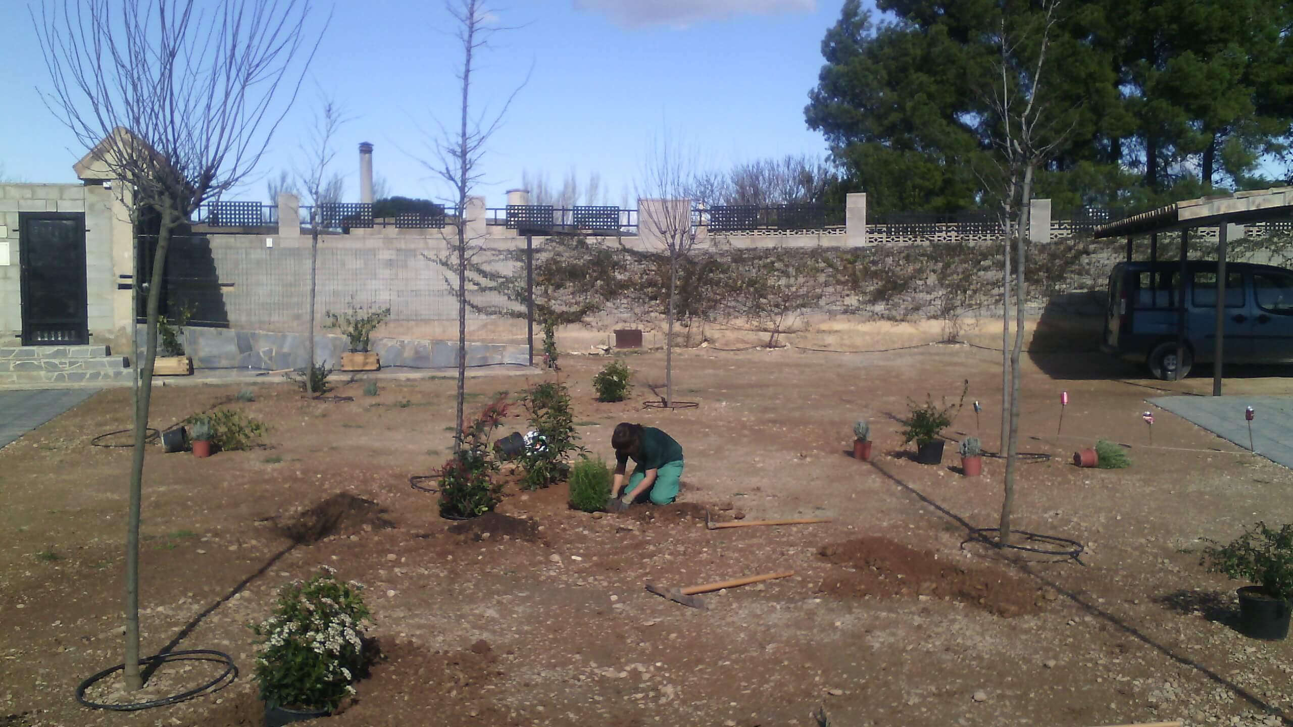 plantacion de elementos vegetales en zaragiza