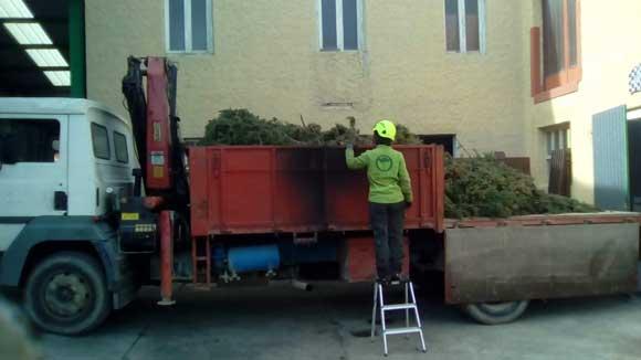 residuos vegetales en zaragoza