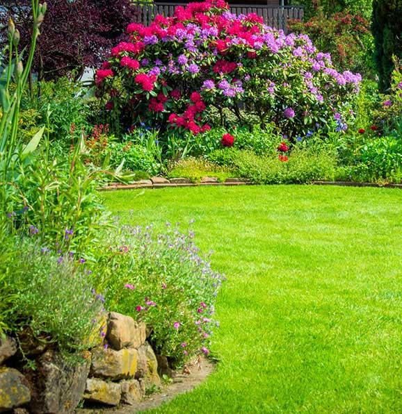 Mantenimiento de jardines en zaragoza arboreum - Mantenimiento de jardines ...